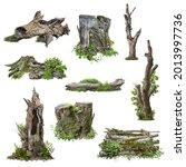 Set Of Cutout Tree Stump. Trunk ...