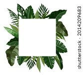 border tropical leaves. foliage ... | Shutterstock .eps vector #2014209683