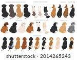 sitting dogs backside clipart ... | Shutterstock .eps vector #2014265243