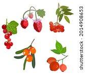 berries set. raspberries red...   Shutterstock .eps vector #2014908653