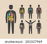human body organs | Shutterstock .eps vector #201527969