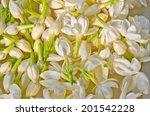 group of white  jasmine for... | Shutterstock . vector #201542228