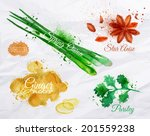 anise,aroma,aromatic,background,botany,bunch,color,condiment,cooking,diet,eating,flavor,floral,food,freshness