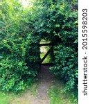 Overgrown Arch In Garden....