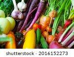 summer allotment harvest of...