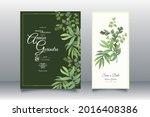 beautiful maidenhair fern... | Shutterstock .eps vector #2016408386