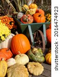 A Collection Of Pumpkins With A ...
