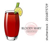 bloody mary cocktail  hand...   Shutterstock .eps vector #2016875729