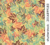 autumn seamless pattern with... | Shutterstock .eps vector #2016899183