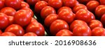 red fresh raw tomatoes in... | Shutterstock . vector #2016908636