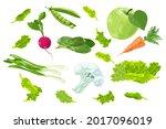cartoon set of summer farm...   Shutterstock .eps vector #2017096019