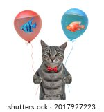 A Gray Cat Holds Balloons With...
