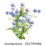 watercolor bunch of blue flower ... | Shutterstock . vector #201794486