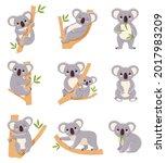 cute koala. funny australia... | Shutterstock .eps vector #2017983209