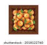 realistic detailed 3d fresh...   Shutterstock .eps vector #2018122760
