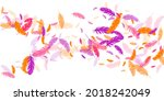 crimson orange purple feather... | Shutterstock .eps vector #2018242049