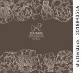 background with maitake  piece...   Shutterstock .eps vector #2018843516