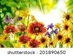 beautiful flowers in the park... | Shutterstock . vector #201890650