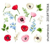 vector set of red  pink  blue... | Shutterstock .eps vector #2018978366