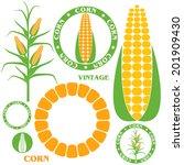 corn. set . isolated vegetables ... | Shutterstock .eps vector #201909430