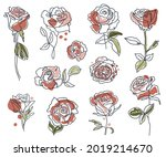 set of linear roses and leaves. ... | Shutterstock .eps vector #2019214670