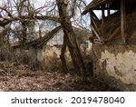 Abandoned Farm House. Ruins Of...
