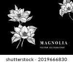 hand drawn floral botany... | Shutterstock .eps vector #2019666830