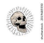 anatomic skull vector art.... | Shutterstock .eps vector #2019685550