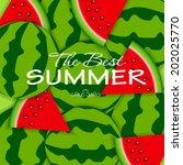 abstract natural summer... | Shutterstock .eps vector #202025770