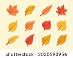 autumn leaves or fall foliage... | Shutterstock .eps vector #2020593956