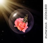 Small photo of Heliconius charitonia on Chicago peace rose in glass globe rays of light on a dark background