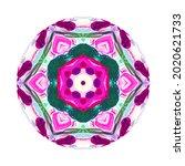 colorful mandala on white... | Shutterstock . vector #2020621733