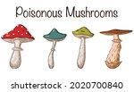 poisonous mushrooms set....   Shutterstock .eps vector #2020700840