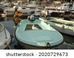 A Muscovy Duck In A Boat ...