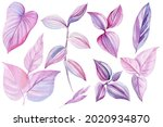 Tropical Leaves Of Pink And...