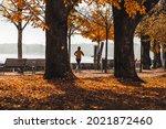 woman running in the park ...   Shutterstock . vector #2021872460