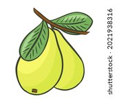 isolated pair of pears on a... | Shutterstock .eps vector #2021938316