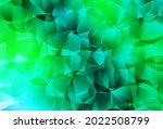 Light Green Vector Shining...
