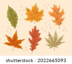 autumn leaves collection....   Shutterstock .eps vector #2022665093