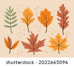 autumn leaves collection....   Shutterstock .eps vector #2022665096