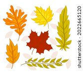 autumn leaves collection....   Shutterstock .eps vector #2022665120