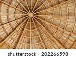 Interior Structure Of A Domed...