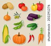 sticker icon set of fresh ripe... | Shutterstock .eps vector #202291276