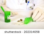 Medical Marijuana Buds  Shake...