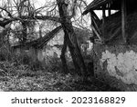 Abandoned Farm House In Black...