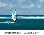 maui  hawaii   september 17 ... | Shutterstock . vector #202353574