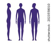 front and side views human body ...   Shutterstock .eps vector #2023558010