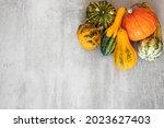 Autumn Harvest. Happy...