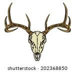 deer skull | Shutterstock .eps vector #202368850