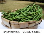 Green Long Beans Also Known As...